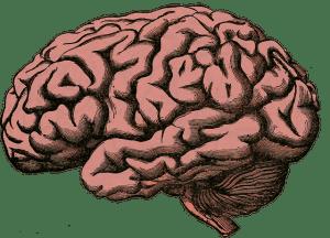 Beim Ausführen von Gewohnheiten schaltet dein Gehirn auf Autopilot.