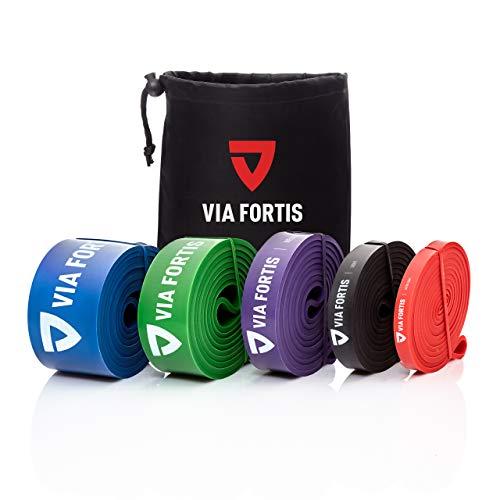 VIA FORTIS Resistance Bands + Übungsanleitung und Tasche - Widerstandsbänder/Klimmzugband und Klimmzughilfe/Fitnessband/Trainings-Bänder für Fitness & Krafttraing