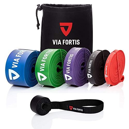 VIA FORTIS Premium Resistance Bands + Übungsanleitung und Tasche - Widerstandsbänder/Klimmzugband und Klimmzughilfe/Fitnessband/Trainings-Bänder für Fitness & Krafttraining