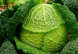 Kohlsorten haben im Spätherbst Saison und lassen sich zu leckeren Gerichten verarbeiten.