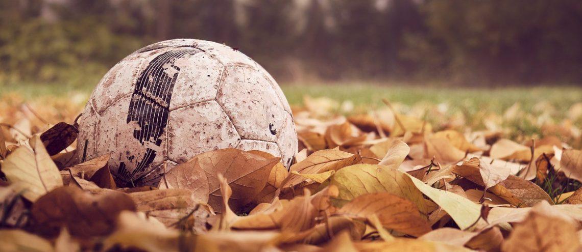 Fußball, Laub, Wald