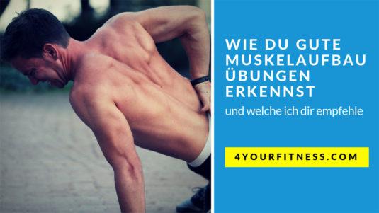 Muskelaufbau Übungen Titelbild