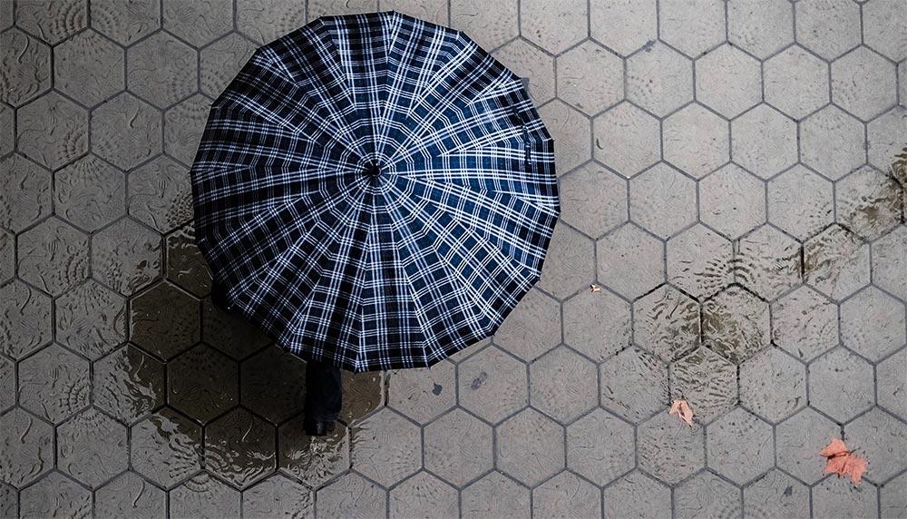 Schirm, Regen, von oben