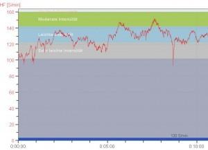 Die Herzfrequenz bei 10-minütigem zügigen Schnee schaufeln (Grafik kopiert aus Polar Pro Trainer)