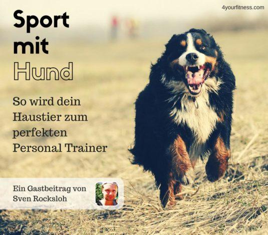 Sport mit Hund Titelbild