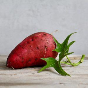 Süßkartoffeln werden auch schon in Mitteleuropa angebaut.