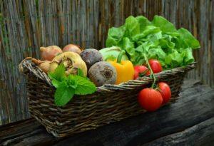 Ernährung und Regeneration gehören auch zu einem guten Trainingsplan.