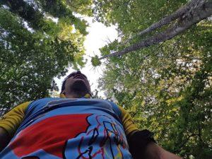 Der Entspannungsfaktor ist im Wald einfach um ein vielfaches höher als sonstwo.