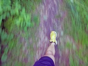 Im Wald kannst du in deiner Bewegung völlig aufgehen.
