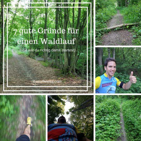Waldlauf Titelbild